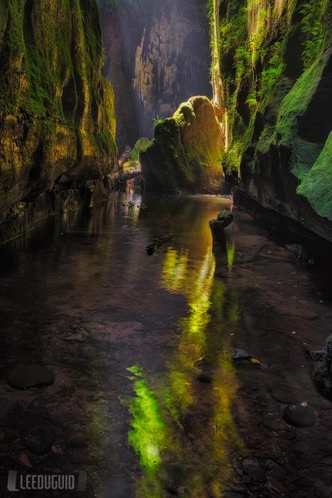 Claustral-Canyon-Blue-Mountains-National-Park-Australia-#11129870